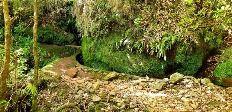 Nice Picture of the Levada Portela