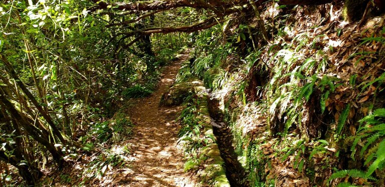 Dryed out Levada