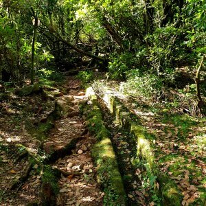 Old Levada without water