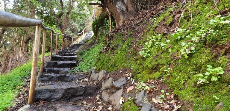 The old stairway leading to Levada Nova back to Ponta do Sol