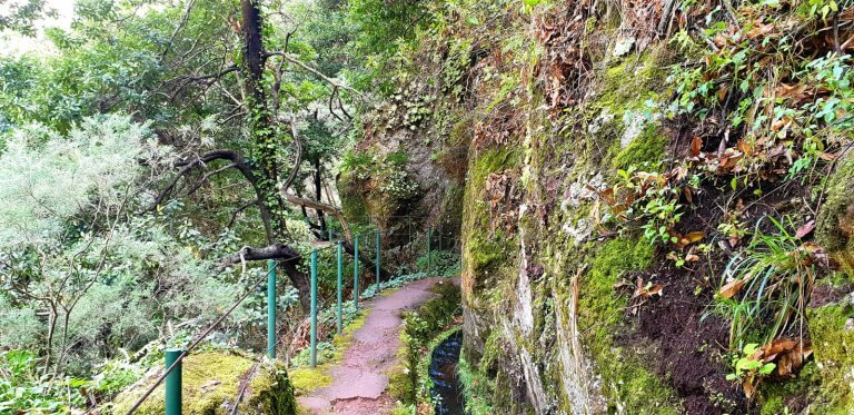 Madeira-Portugal-Guide-Levada-da-Ponta-do-Sol-H-07