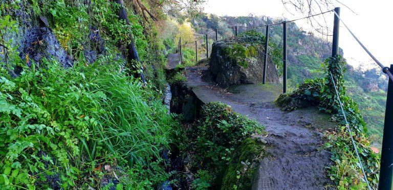 A very green Levada in Ponta do Sol