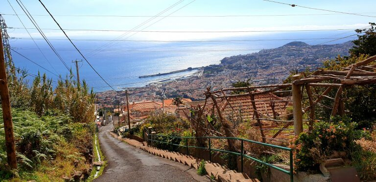 A very nice view down to the center of Funchal on the way down to the botanical garden