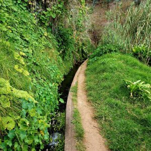 First view to the Levada dos Tornos