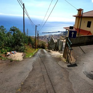 The street is very steep down to the botanical garden