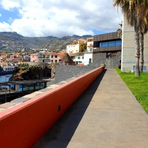 Getting Closer to Camara de Lobos