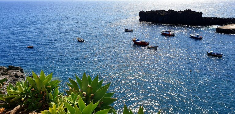 Fantastic view to the fisher boats floating in the atlantic ocean close to the bay of Camara de Lobos