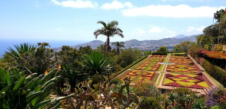 The view from the main garden in the botanical garden