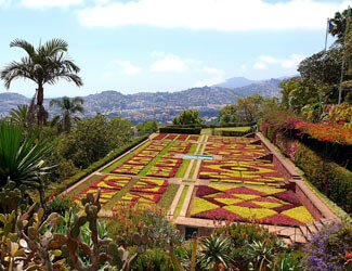 Main View of the botanical Garden in Funchal showing a beautiful arrangment of flowers